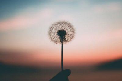 mindfulness-semplice
