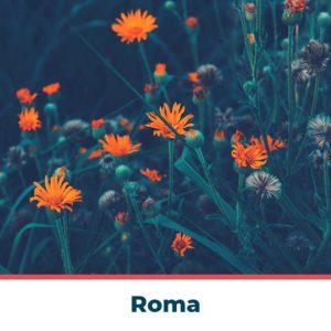 corsi-mindfulness-roma